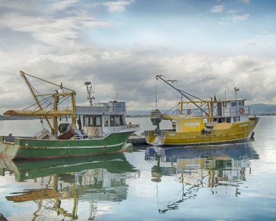 EcoScope: New European project to improve fishery management